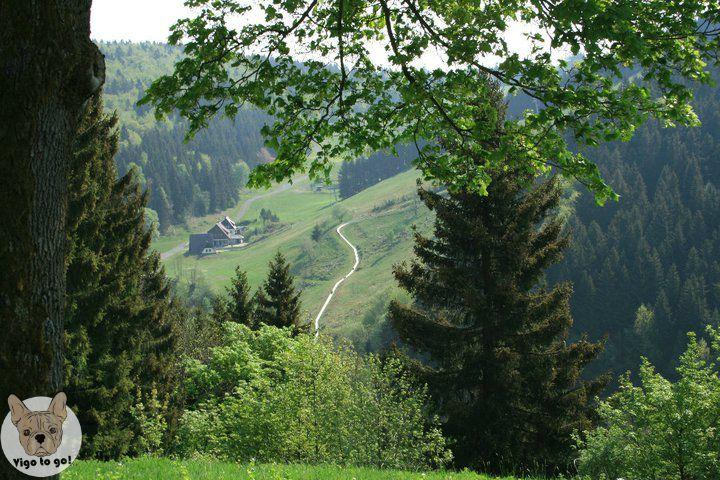Sankt Andreasberg - vigotogo.com