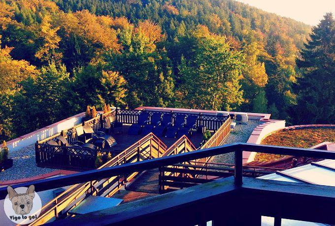 Vigo w hotelu - vigotogo.com